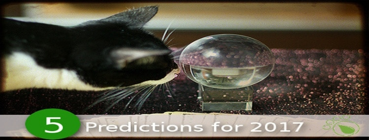 5 Predictions for Pet Trends in 2017